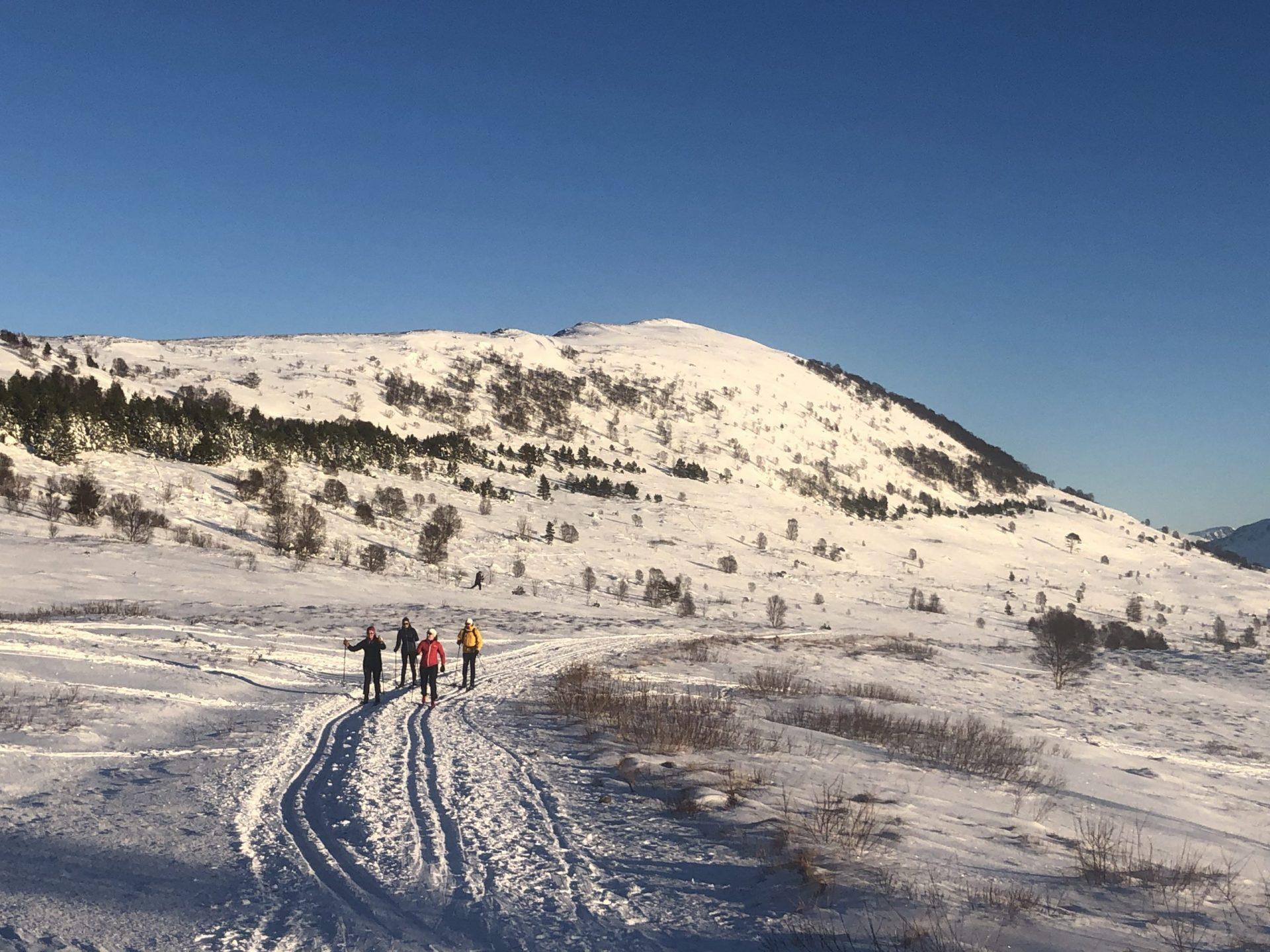 breifjellet-fjelltur-skiløyper-visit-ulstein-kommune